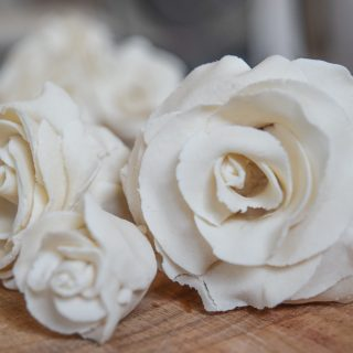 HOW TO MAKE FLAVOURED MODELLING CHOCOLATE ROSES