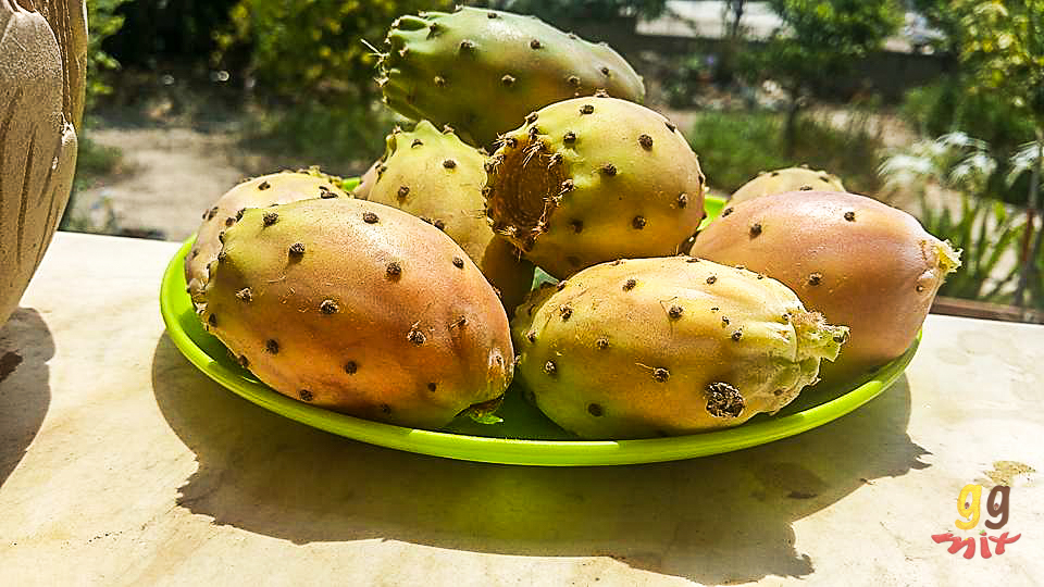 A PLATE OF PAPOUTSOSIKA - PRICKLY PEAR