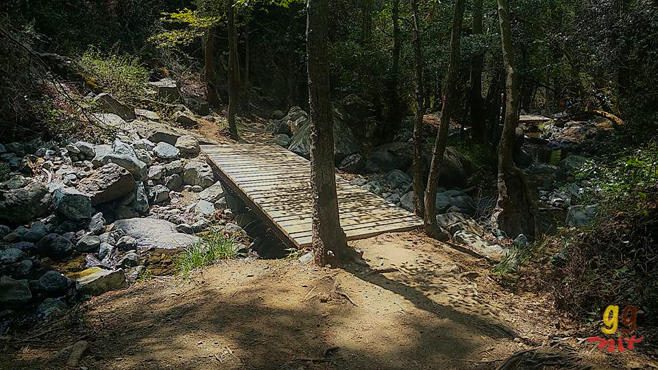 A WODDEN BRIDGE CROSSING IN THE FOREST IN CYPRUS