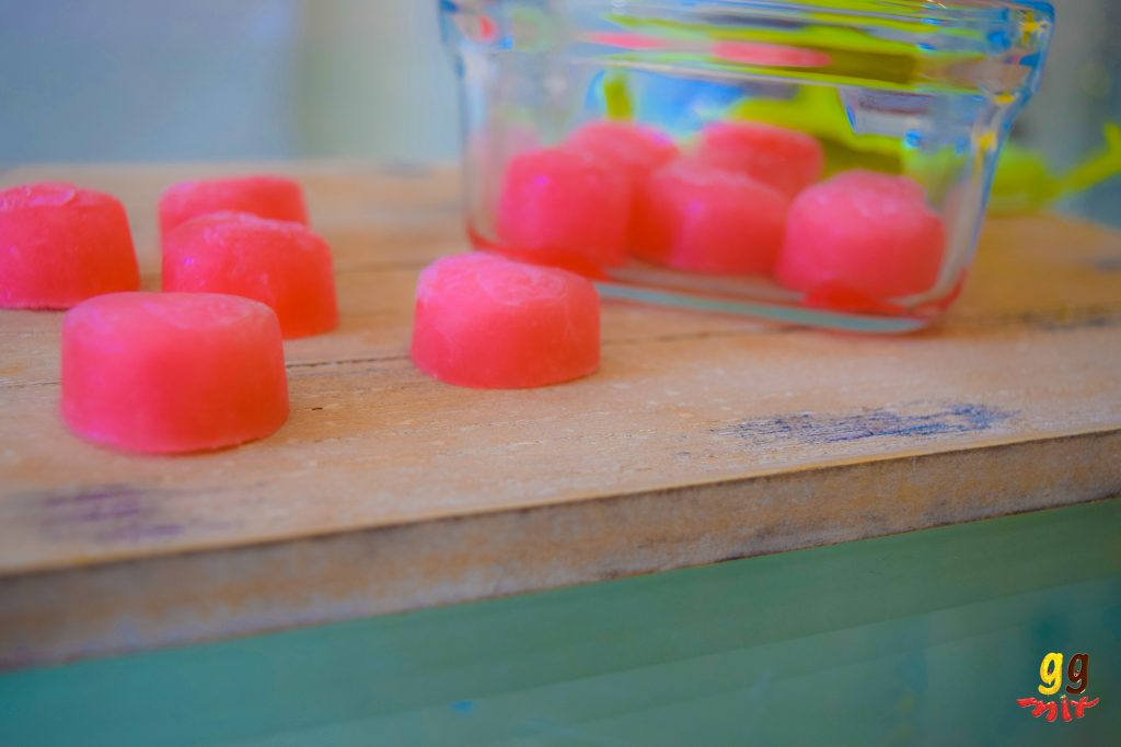 14 WATERMELON TREATS (61)